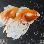 Fische 50x50 cm