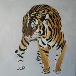 """Tiger 3"" 50x50 cm"