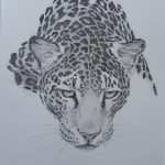 1c Leopard DIN A4