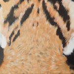 Tigeraugen 2 30x90 cm